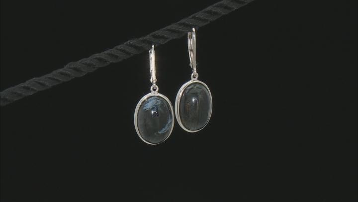 Blue Pietersite Rhodium Over Sterling Silver Dangle Earrings