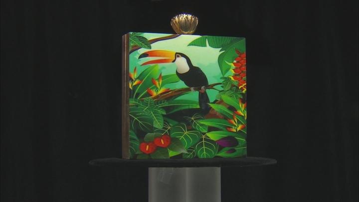 Toucan Multi-color Wooden Clutch