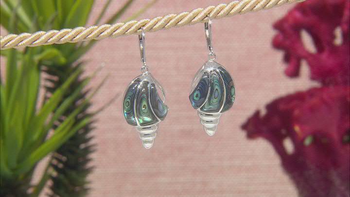 Abalone shell Sterling Silver Earrings