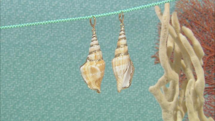 Multicolor Seashell Simulant Gold Tone Dangle Earrings